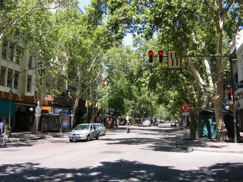 avenue san Martin avec ses arbres qui rendent la vie agréable