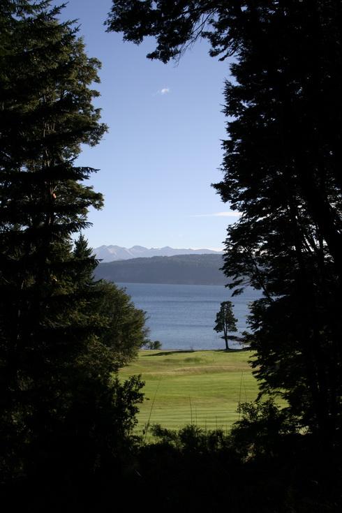 Les propriétaires de la maison ont taillé la forêt pour avoir une belle vue...